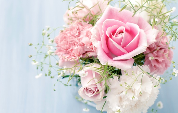 Picture flowers, roses, bouquet, pink, white, clove