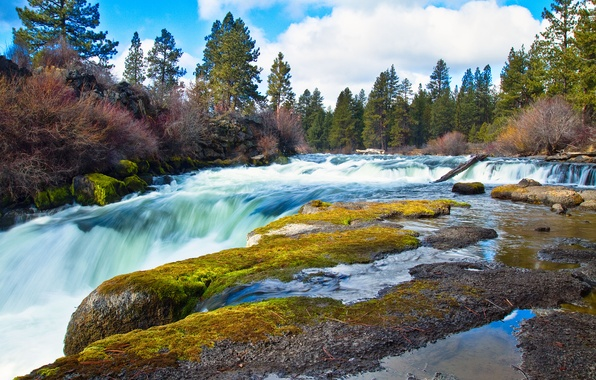 Picture forest, the sky, clouds, nature, river, stones, moss, stream