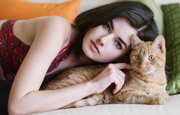 Picture cat, look, face, mood, red