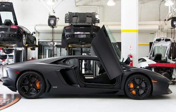 Picture Wallpaper, garage, Lamborghini, wallpapers, Aventador, LP 700-4