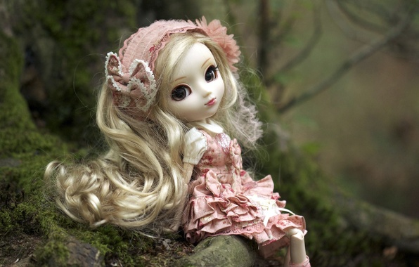 Picture nature, toy, doll, dress, blonde, headband, sitting
