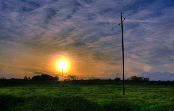 Photo wallpaper posts, the sun, grass
