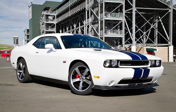 Picture Dodge, SRT8, Challenger, Dodge, 2011, Challenger