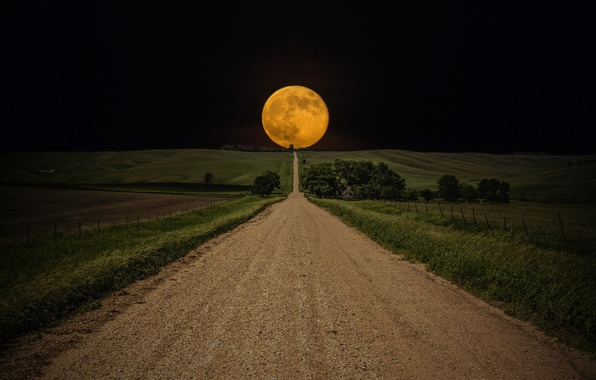 Picture The sky, Field, Road, Night, The moon, The way, Moon, Sky, Night, Road, Field