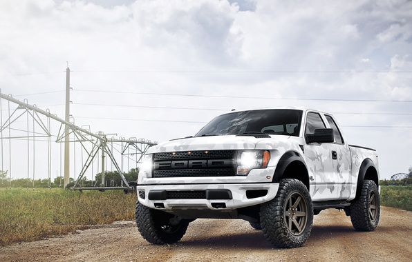 Picture white, the sky, clouds, Ford, white, Ford, Raptor, pickup, Raptor, power lines, F-150, SVT, power …