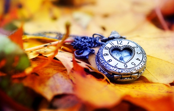 Picture autumn, leaves, arrows, heart, watch, love, dial, heart, autumn, leaves, hands, clock, dial