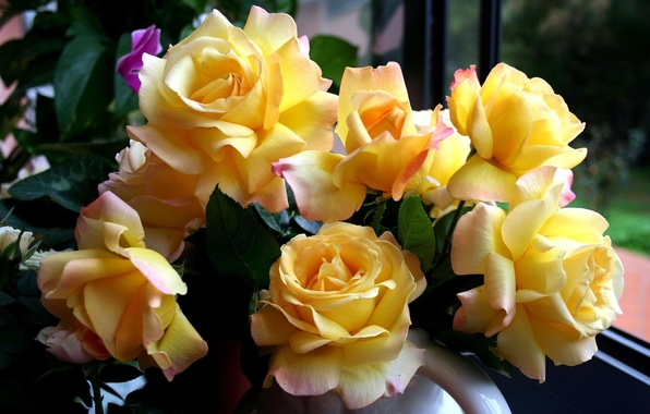 Picture flowers, roses, bouquet, yellow, beautiful, yellow