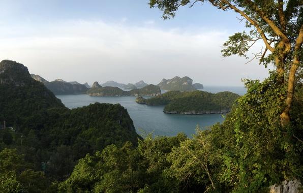 Picture landscape, nature, Park, Thailand, Thung Salaeng Luang