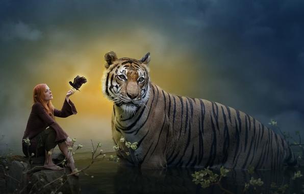 Picture tiger, fantasy, art, Elf
