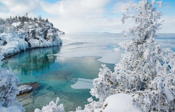 Picture winter, snow, tree, ice, Canada, Bay, Ontario, Canada, Ontario, Bruce Peninsula National Park, Georgian Bay, …