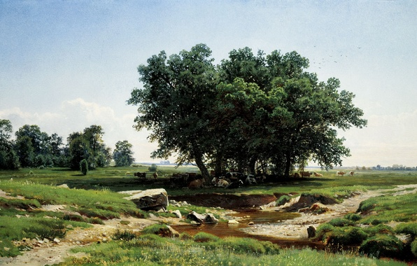 Picture picture, Shishkin, In the shadows