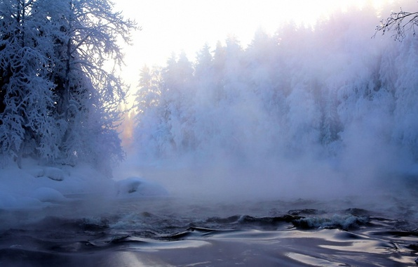 Picture frost, forest, snow, trees, fog, river, Winter, haze