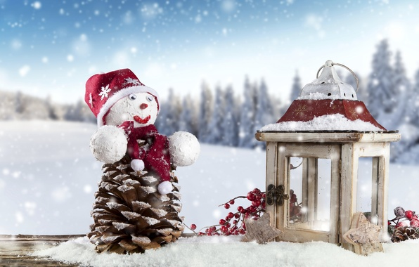 Picture winter, snow, landscape, branches, berries, holiday, Board, new year, stars, lantern, snowman, bump, decoration
