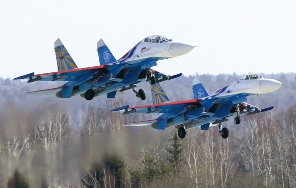Picture The plane, Forest, Fighter, Day, Russia, Aviation, BBC, Multipurpose, The rise, the fourth generation, Best, …