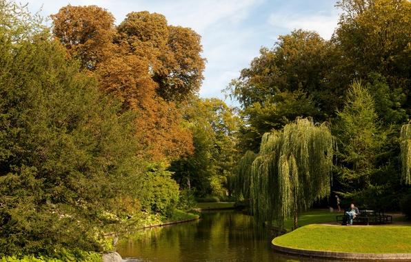 Picture nature, pond, photo, garden, Denmark, Copenhagen, Botanical