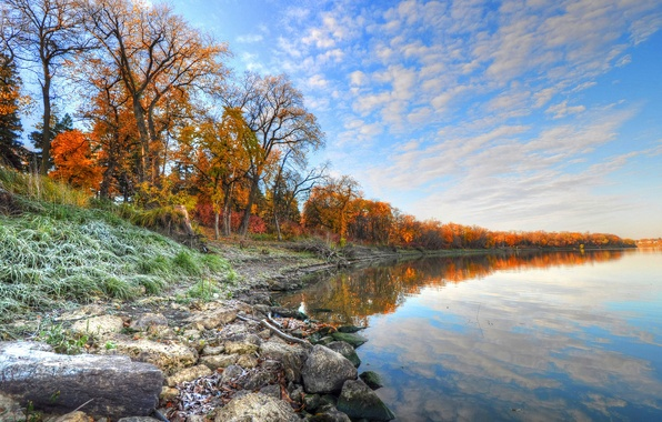 Picture frost, autumn, the sky, grass, trees, river, stones