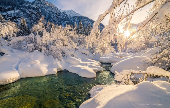 Picture winter, forest, water, the sun, snow, trees, river, stream, forest, Winter, river, sky, trees, nature, …
