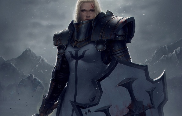 Picture girl, snow, mountains, weapons, blood, art, shield, Diablo III, armor, wound, Crusader
