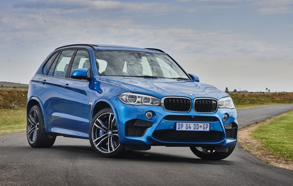 Picture BMW, BMW, crossover, F85