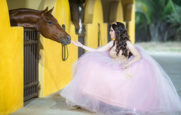 Picture girl, mood, horse, horse, dress, the bride