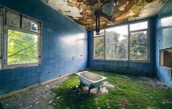 Picture room, interior, bath