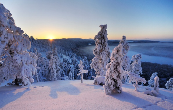 Picture winter, snow, trees, landscape, Hand, panorama, Finland, Finland, In Kuusamo, Konttainen, Ruka, Kuusamo