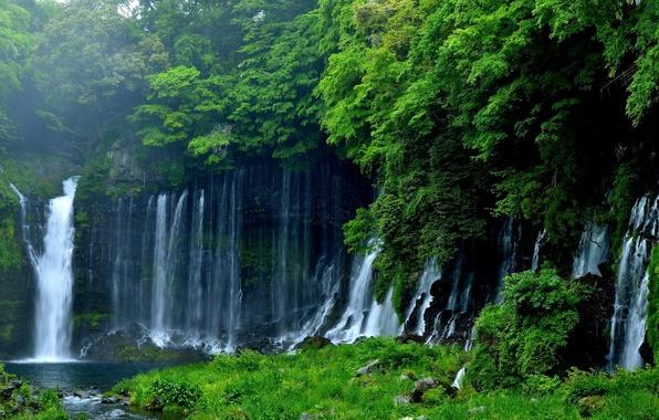 Picture greens, trees, nature, Japan, waterfall, Fujinomiya, Lake Tanuki