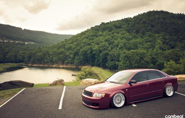 Picture Audi, tuning, stance, Audi A4, canibeat, Marc Davis