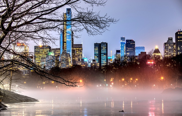 Picture trees, branches, nature, the city, lights, fog, lake, Park, building, home, New York, skyscrapers, the …