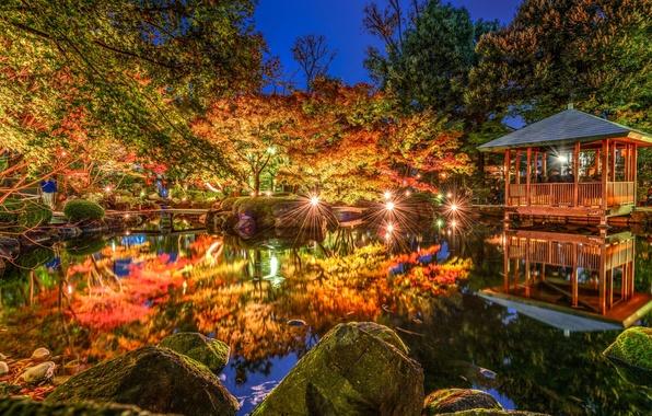 Picture trees, lights, pond, Park, reflection, Japan, Tokyo, Tokyo, Japan, gazebo, Otaguro park, Ogikubo