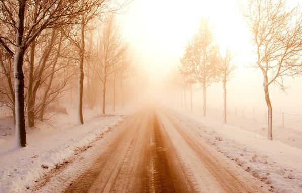 Picture winter, road, snow, trees, landscape, branches, nature, background, tree, widescreen, Wallpaper, day, wallpaper, trees, widescreen, …