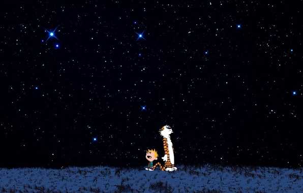 Picture stars, night, tiger, boy, tiger, delight, Calvin and Hobbes