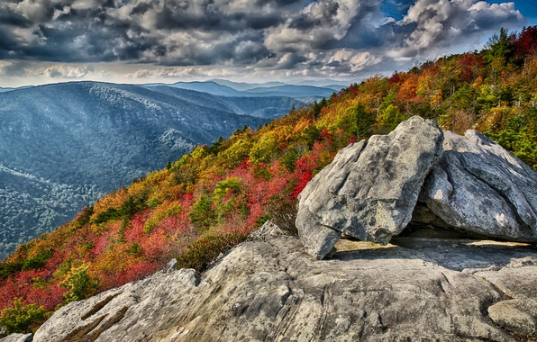 Picture autumn, forest, the sky, mountains, clouds, stones, rocks, slope