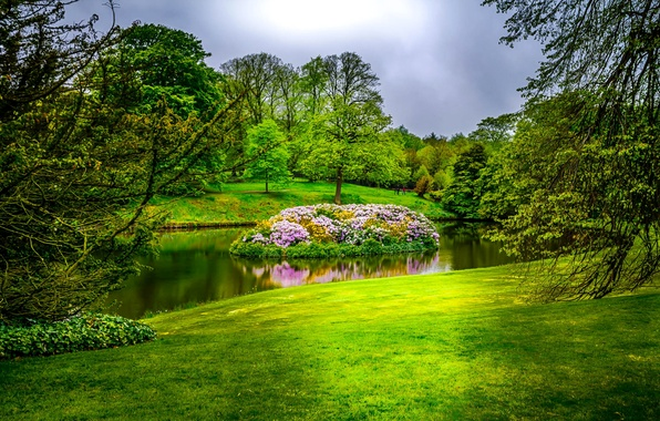 Picture greens, grass, trees, flowers, pond, Park, England, island