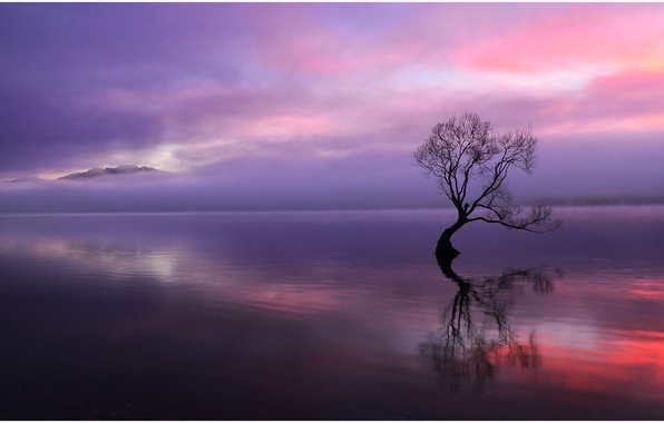 Picture clouds, sunset, mountains, lake, reflection, tree, the evening, dry