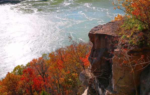 Picture autumn, trees, rock, river, Niagara, Canada