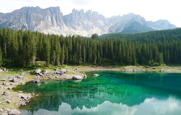 Picture forest, trees, mountains, lake, stones, rocks, shore, Italy, South Tyrol, The Dolomites, Karersee, Carezza