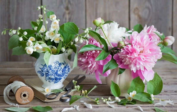 Picture flowers, peony, Jasmine