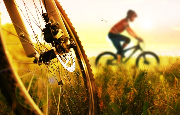 Picture legs, bike, sunset, cycling
