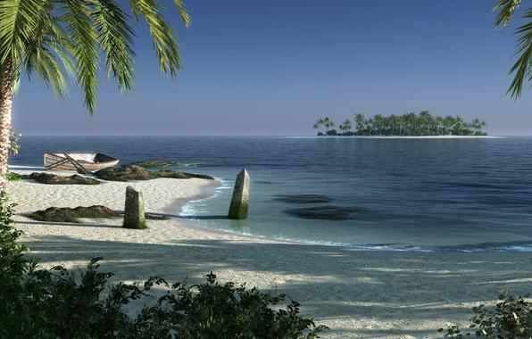 Picture sea, beach, landscape, palm trees