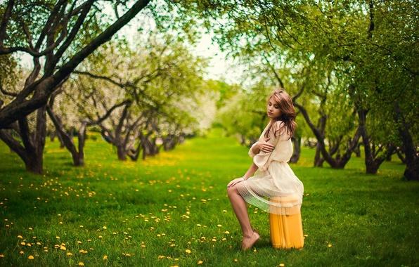 Picture Apple, Girl, Nature, Grass, Green, Sun, Yellow, Garden, Suitcase