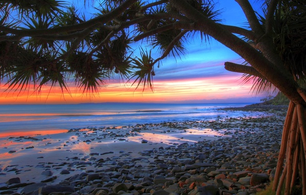 Picture STONES, SEA, TREE, HORIZON, The OCEAN, The SKY, SAND, CLOUDS, SURF, SUNSET, COAST, SHORE, PALMA