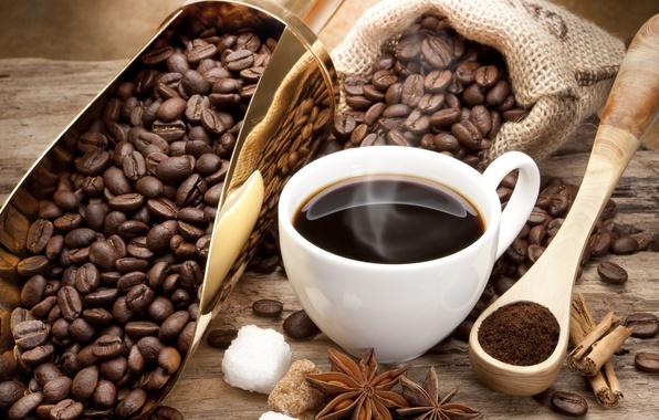 Picture coffee, grain, Cup, sugar, cinnamon