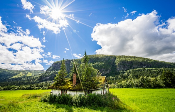 Picture field, summer, light, nature, house