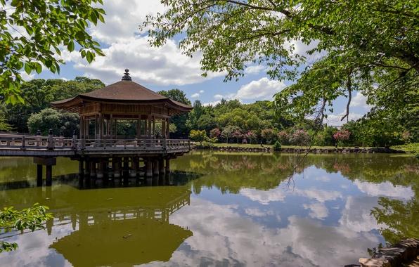 Picture trees, pond, reflection, Japan, gazebo, pavilion, Ukimido Pavilion, Nara Park, Nara, Nara, Nara Park