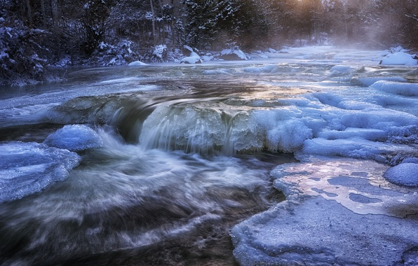Picture cold, ice, winter, forest, water, snow, river, stream, river