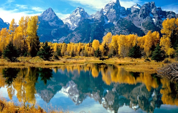 Picture autumn, forest, water, trees, mountains, lake, reflection, yellow