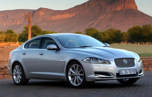 Picture rock, background, Jaguar, Jaguar, sedan, silver.the front, Ixef