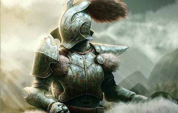 Picture warrior, art, tail, helmet, fur, knight, armor