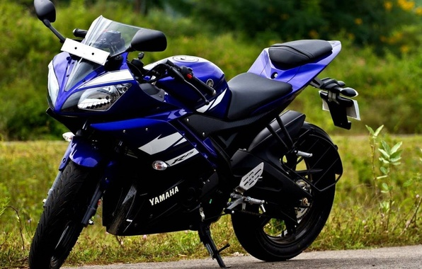 Picture photo, Yamaha, sportbike, Yamaha, 2014, P15, R15